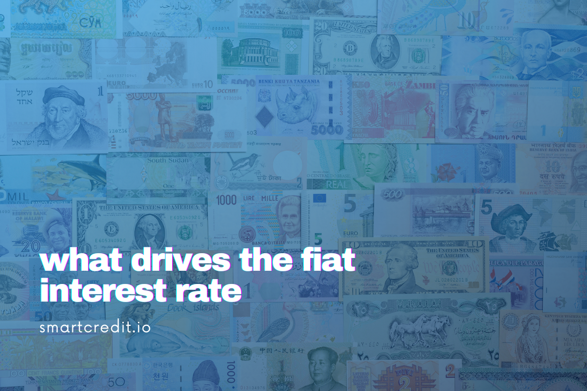 What Drives the Fiat Interest Rate and How Much Should it Be?